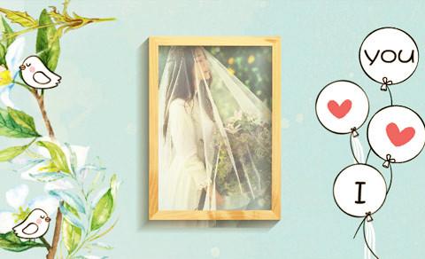 手绘花卉,照片视频制作软件